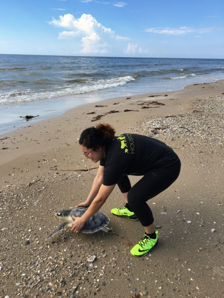 During survey, Brenda helped release a Kemp's ridley sea turtle that was rehabilitated by NOAA