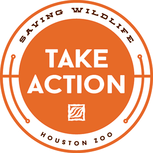 Take Action with the Houston Zoo! You can make small changes that make a big impact for wildlife.