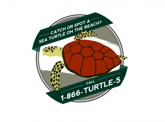 SeaTurtleSticker_outline