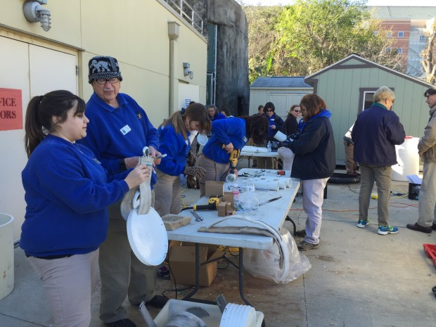 Volunteers working at the enrichment workshop