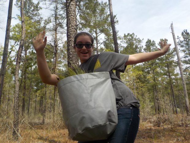 One of our Alternative Teen Break participants enjoying time in the Big Thicket planting long-leaf pine trees to save wildlife!