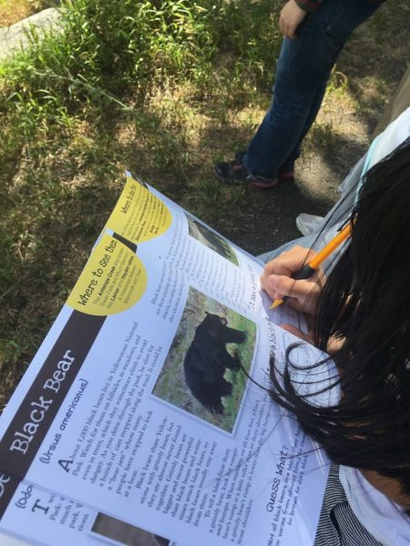 Kids on the program brought interactive workbooks to fill out as they spotted wildlife.