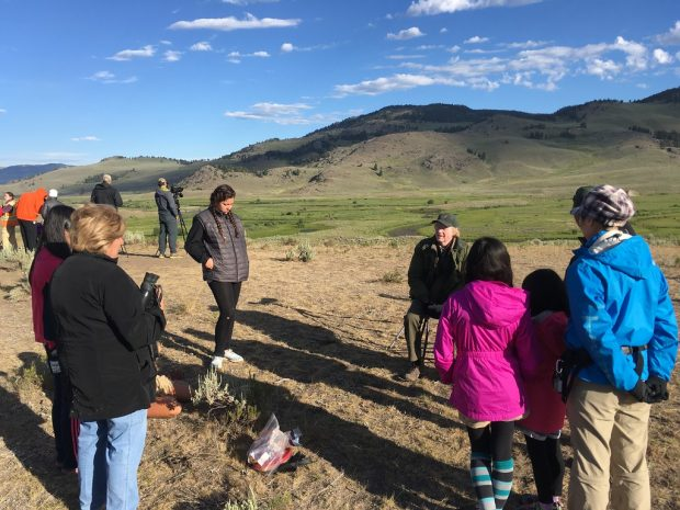 Observing wolves in the wild and discussing wolf history in Yellowstone with biologist, Rick McIntyre.