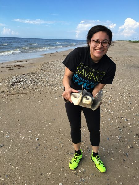 Brenda happily releasing this sea turtle back into the wild!