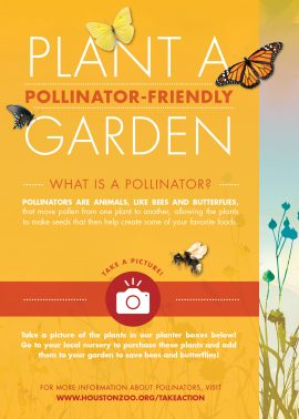 conservation-stage_15x21_pollinator-sign