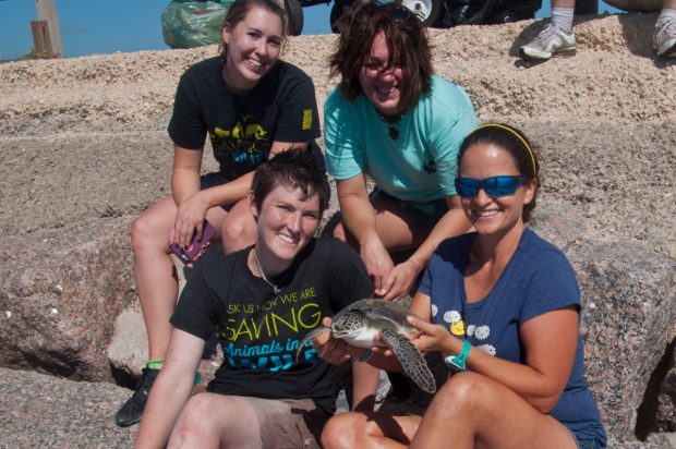 sea-turtle-rescue-with-lyndsey