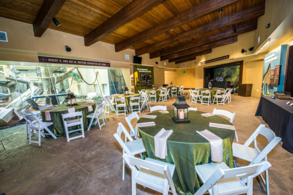 Corporate Events And Meetings The Houston Zoo