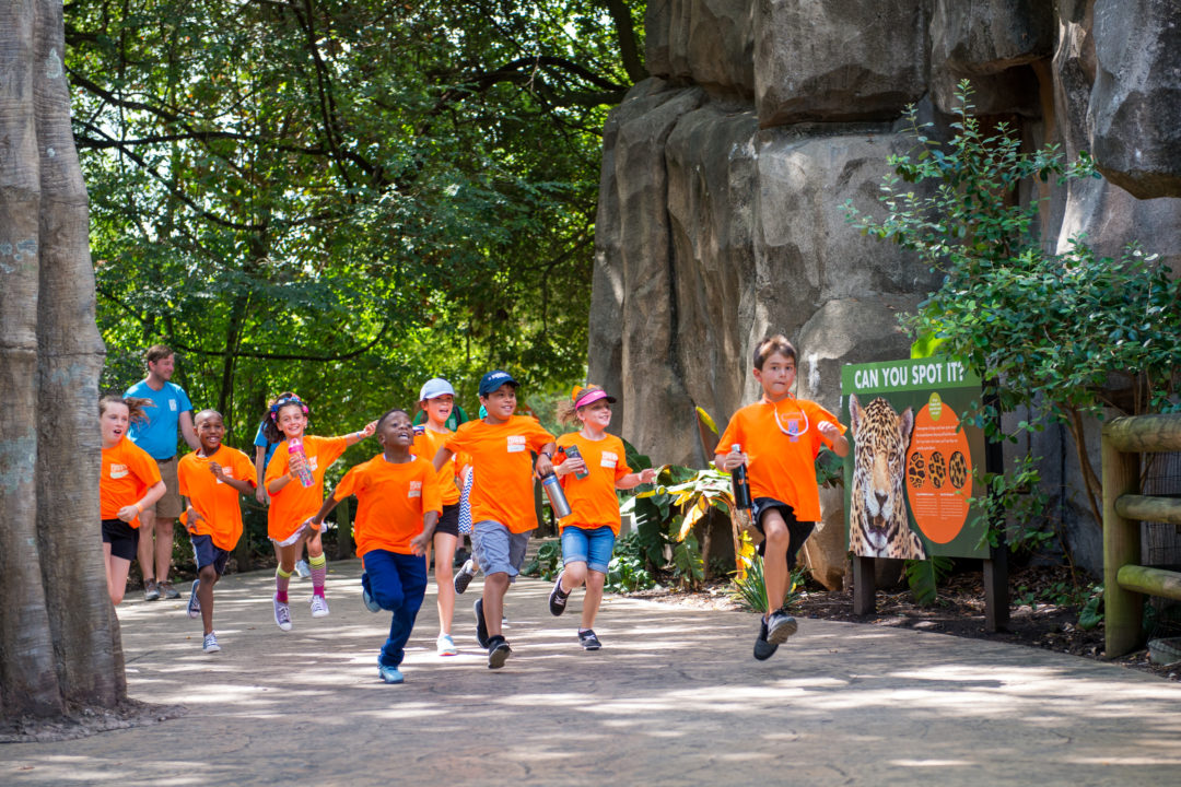 Houston Events Calendar 2019 Calendar of Events   The Houston Zoo
