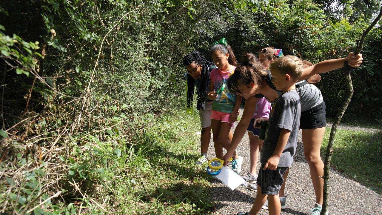 Family Nature Club: Armand Bayou Nature Center - The Houston Zoo