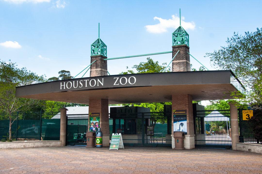 Exhibits - The Houston Zoo