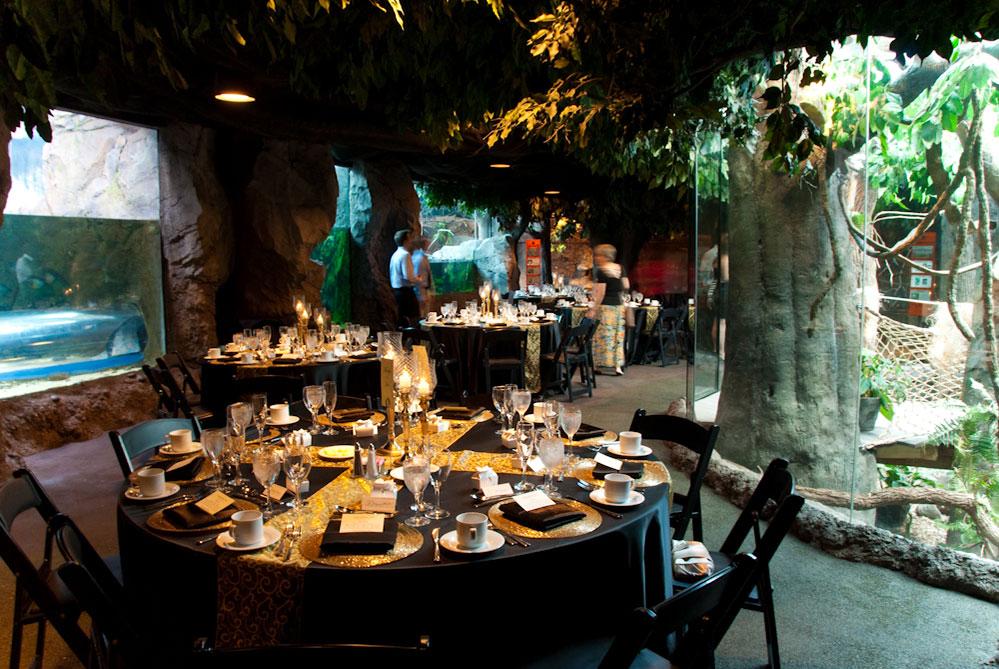 Wedding Receptions The Houston Zoo