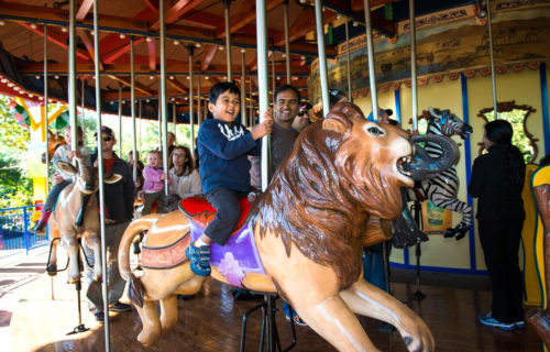 up-close shot of child riding wildlife carousel at the Zoo