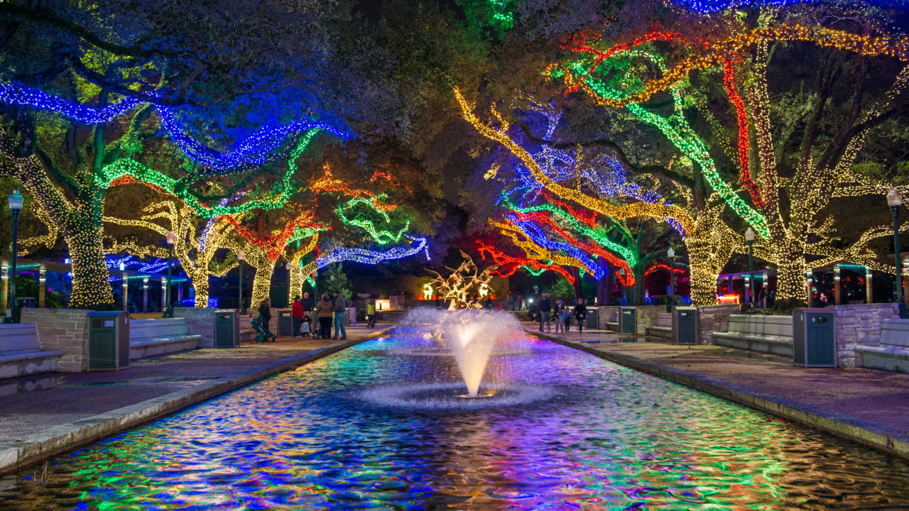 Christmas Zoo Lights 2020 TXU Energy Presents Zoo Lights   The Houston Zoo