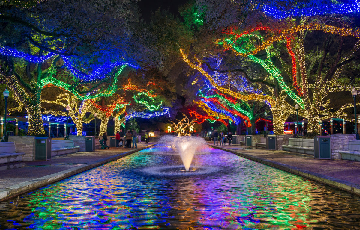It S Beginning To Look A Lot Like Zoo Lights The Houston Zoo