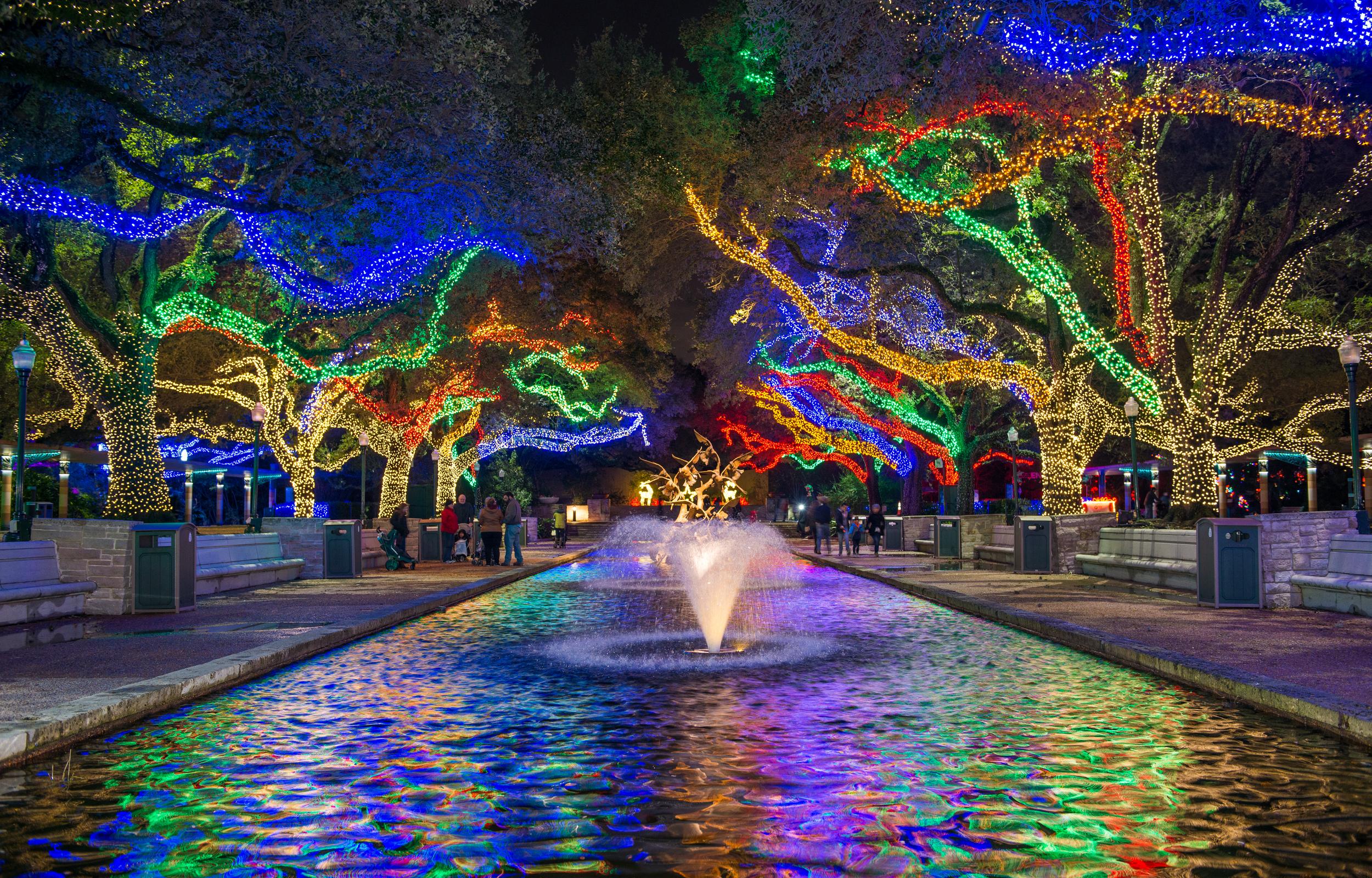 Christmas Lights Houston 2020 It's Beginning to Look A Lot Like Zoo Lights   The Houston Zoo