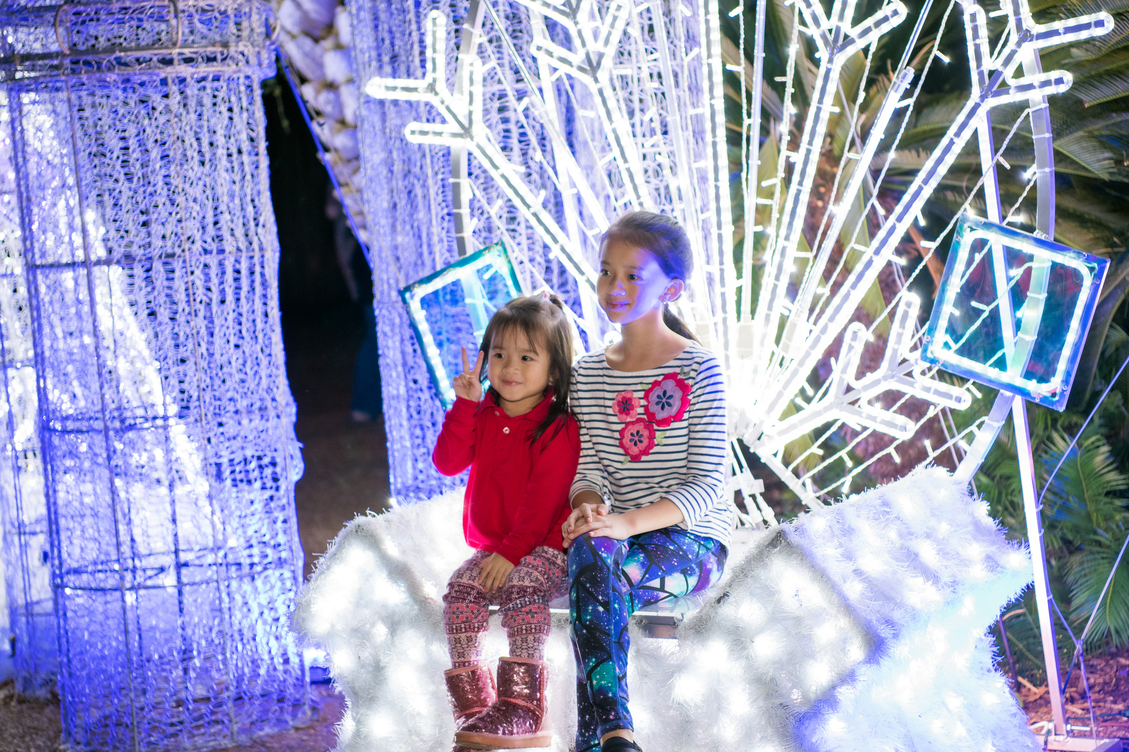 TXU Energy Present Zoo Light @ Zoo light | Houston | Texas | United States