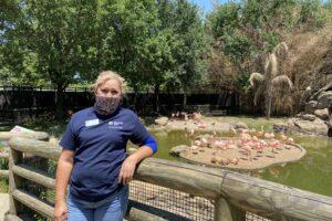 alma in front of flamingo exhibit