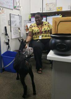 joann with goat in office