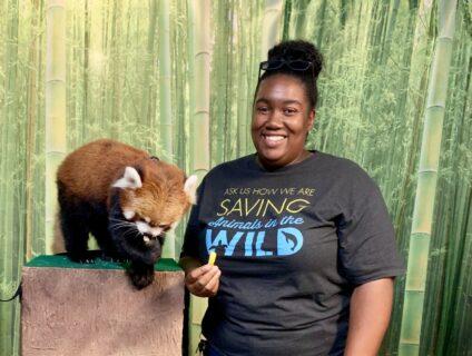 joann feeding a red panda