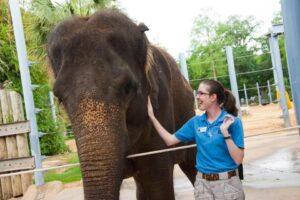 kelly and elephant