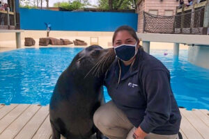 ruth being kissed by sea lion